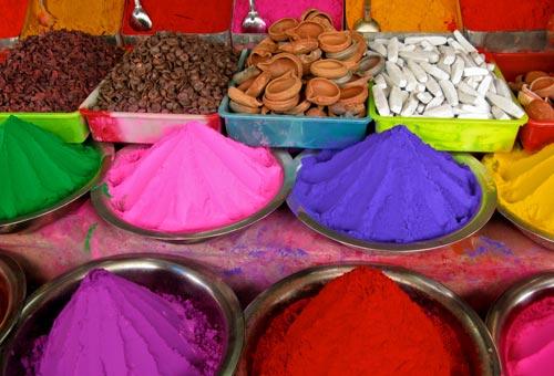 Holi la festa dei colori - Immagine di lucertola a colori ...